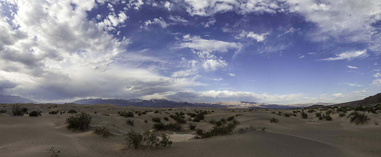 Mesquite dunes -3
