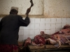 Lamu - Part 2 - Meat Market 2
