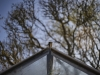 DSC02810©Uchujin-AdrianStorey-260320