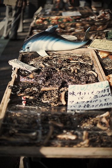 Dolphin Meat (イルカ) for sale in Numazu,Shizuoka - ©Uchujin-Adrian Storey. All Rights reserved.